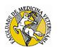 faculdade-medicina-vet